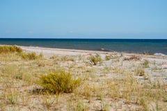 Одичалый пляж и морская вода голубя на симпатичный солнечный день Стоковые Фото