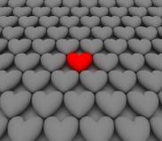 одна влюбленность одно сердца Стоковое Изображение RF