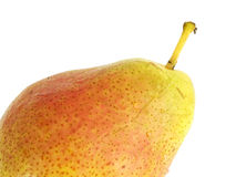 одна груша Стоковая Фотография RF