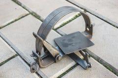 Одна ловушка утюга лежа на каменном поле стоковые изображения rf