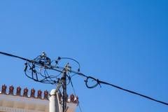 Одна птица голубя сидя на электрических проводах Стоковая Фотография
