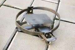 Одна ржавая ловушка утюга лежа на каменном поле стоковое фото rf