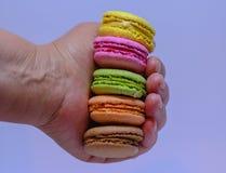 Одна рука ` s держа красочные macarons Стоковое Изображение