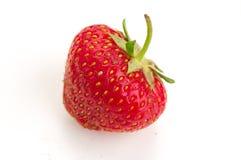 Одна ягода зрелых сочных клубник Стоковая Фотография