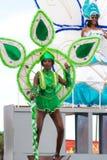 однолетнее verde масленицы плащи-накидк Стоковые Изображения RF