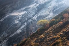Одно дерево на горном склоне против гор на заходе солнца Стоковое Изображение RF