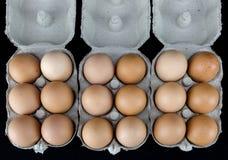 Одно и полдюжины из русых яичек в картонных коробках Стоковое фото RF