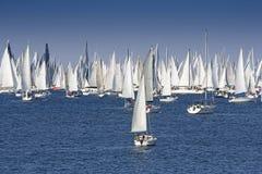 Одно часто самое большое regata парусника в мире стоковая фотография