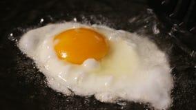 Одно яичко зажарено в сковороде в подсолнечном масле акции видеоматериалы
