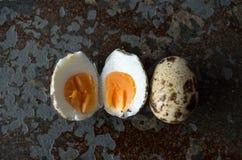 Одно яичко триперсток раскрывает одно неподвижное закрытое от перспективы глаза птиц Стоковое Изображение