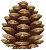 Одно pinecone в взгляде крупного плана иллюстрация вектора