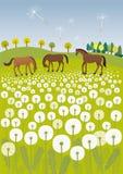 Одуванчики и лошади Стоковое Изображение