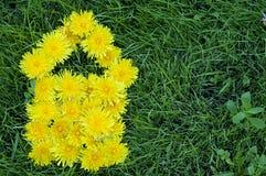 одуванчик цветет дом формы Стоковая Фотография RF