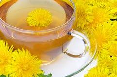 Одуванчик чая Стоковое Фото