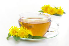 Одуванчик чая Стоковая Фотография