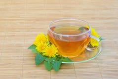 Одуванчик чая Стоковые Изображения
