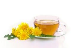Одуванчик чая Стоковые Фото