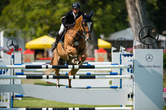 *** 10-ое августа 2014 Grand Prix CSIO-W в Братиславе, Словакии Стоковое фото RF