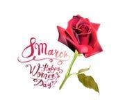 8-ое марта Счастливый день ` s женщин! Поднял Стоковое Изображение