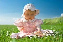 ое поле младенца красивейшее стоковые изображения