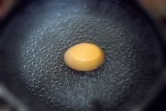 ое яичко Стоковое фото RF