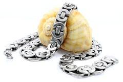 Ожерелье нержавеющей стали Стоковые Изображения RF