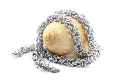 Ожерелье нержавеющей стали Стоковые Изображения