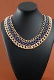 Ожерелье ` s женщины на черном кожаном манекене Стоковое фото RF