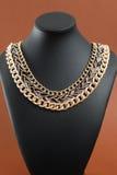 Ожерелье ` s женщины на черном кожаном манекене Стоковое Изображение