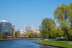 Оживление реки с парком и зданиями стоковые фотографии rf