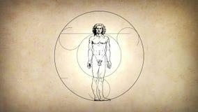 Оживленный человек Vitruvian Леонардо Да Винчи видеоматериал