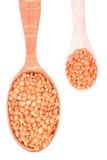 2 ложки с красными чечевицами Стоковое Изображение RF
