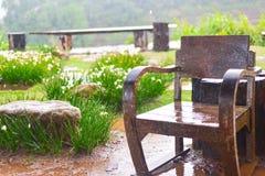 дождь Стоковые Изображения RF