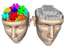 Озадачьте мозг женщины и человека - шаржа Иллюстрация штока