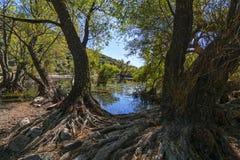 Озера близнеца долины ` s почтового голубя Стоковые Изображения RF