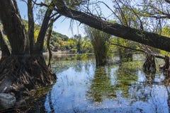 Озера близнеца долины ` s почтового голубя Стоковые Фотографии RF
