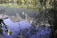 Озера зеркал в национальном парке Fiordland Красивая Новая Зеландия Стоковые Изображения RF