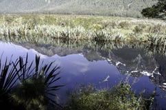 Озера зеркал в национальном парке Fiordland Красивая Новая Зеландия Стоковое Изображение RF