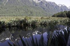 Озера зеркал в национальном парке Fiordland Красивая Новая Зеландия Стоковое фото RF