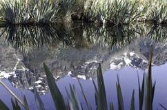 Озера зеркал в национальном парке Fiordland Красивая Новая Зеландия Стоковое Изображение