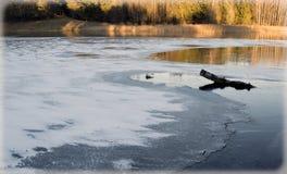 Озера зимы Стоковые Фото