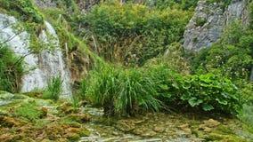 Озера с водопадом в Хорватии Положение: Plitvice, jezera Plitvicka национального парка сток-видео