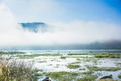 Озера с предпосылкой гор Стоковые Изображения RF