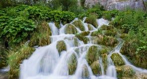 Озера Plitvice, национальный парк в Хорватии Стоковые Изображения RF