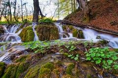 Озера Plitvice с водопадом Стоковое фото RF