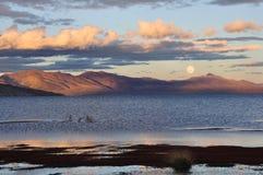 озера s Тибет Стоковое Изображение