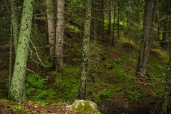 Озера Smolyan Стоковое Фото
