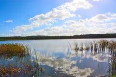 озером Стоковое Изображение
