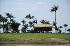 Озеро Амазонк Стоковая Фотография