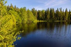 Озеро ландшафта лета одичалое на острове Valaam стоковое изображение